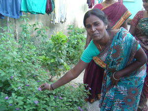 Tamalselvi is very proud of her newly created herb garden